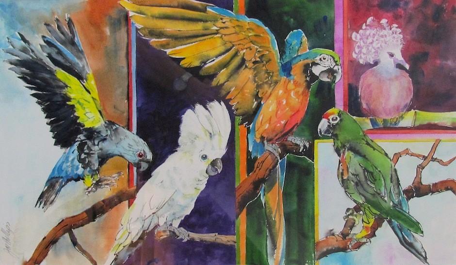 """""""Exotic Birds""""  - Joe Phillips"""