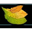 Tabacco DRY-4