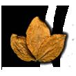 Tabacco Sahara
