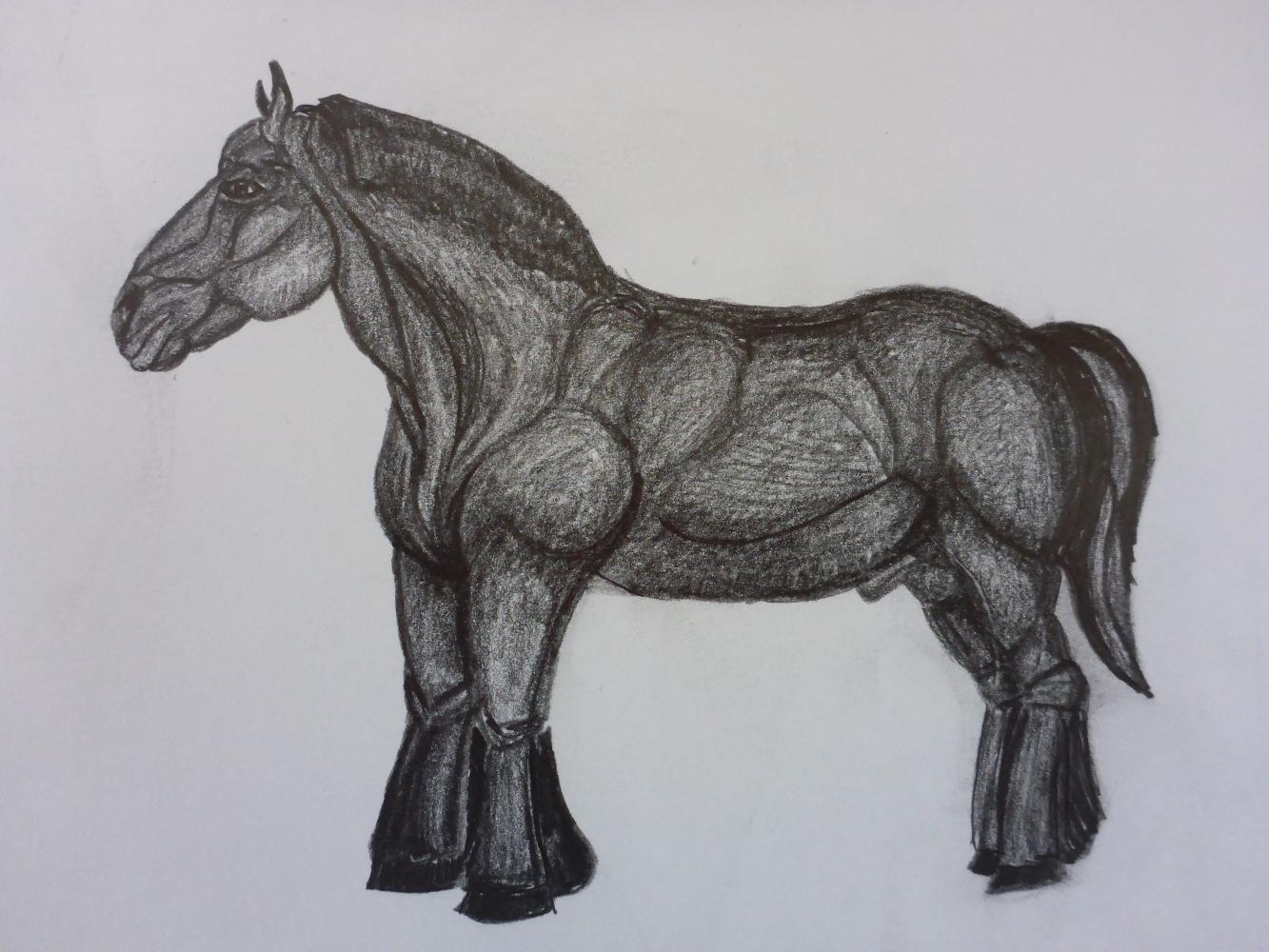 """Stallion III"", 2018, pencil on paper, 30 x 21 cm"