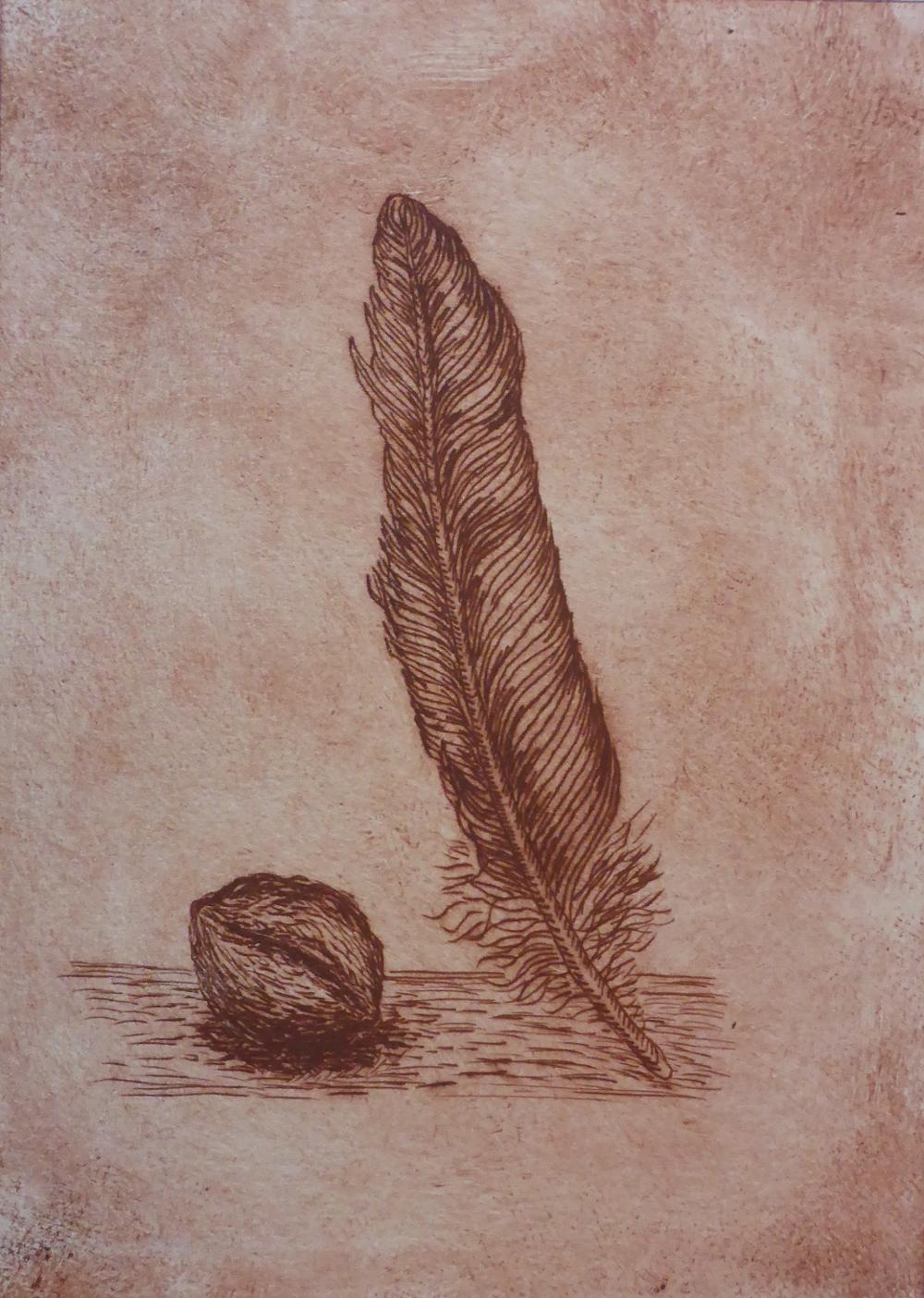 """""""Feder mit Nuss I"""", 2018, Kaltnadelradierung auf Papier, 15 x 21 cm"""