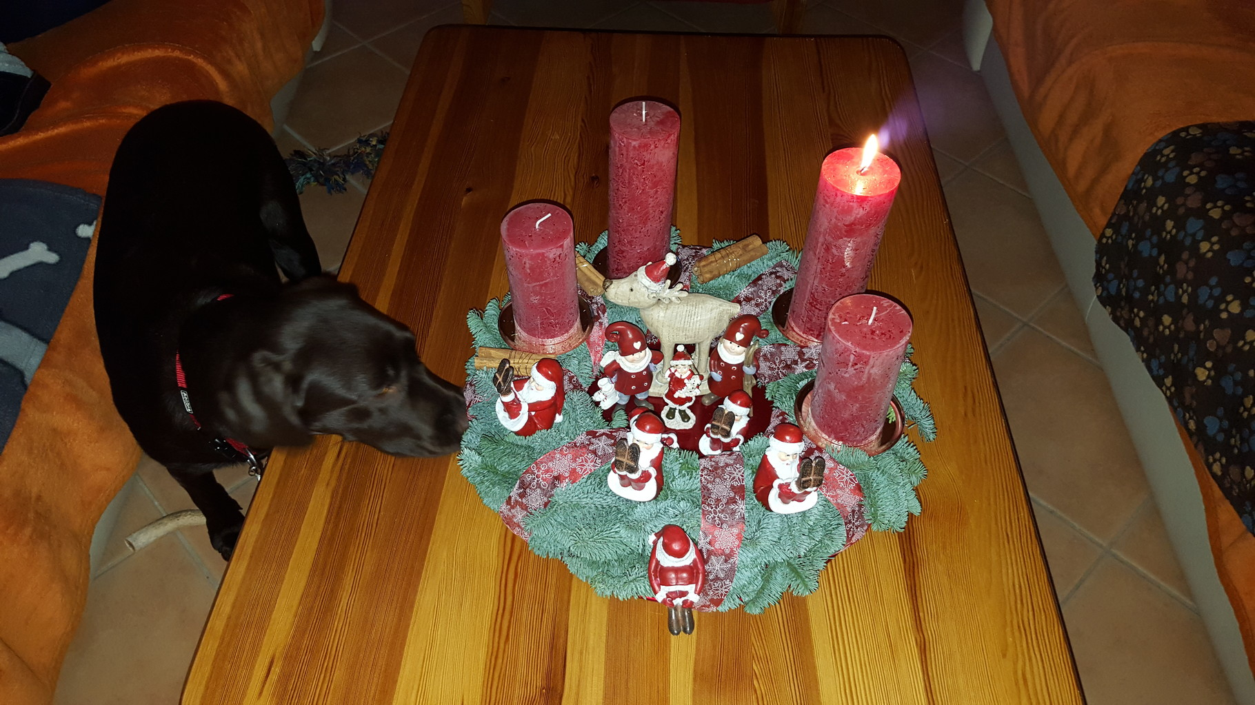Meine erste Adventszeit...den Adventskranz hat meine Mama aber toll geschmückt. Nur schade, dass ich mir die Figürchen nicht nehmen darf.