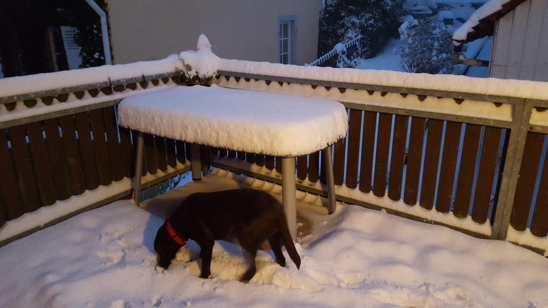 Nö Mama, ich will jetzt noch nicht rein kommen. Es ist doch so herrlich hier draußen.
