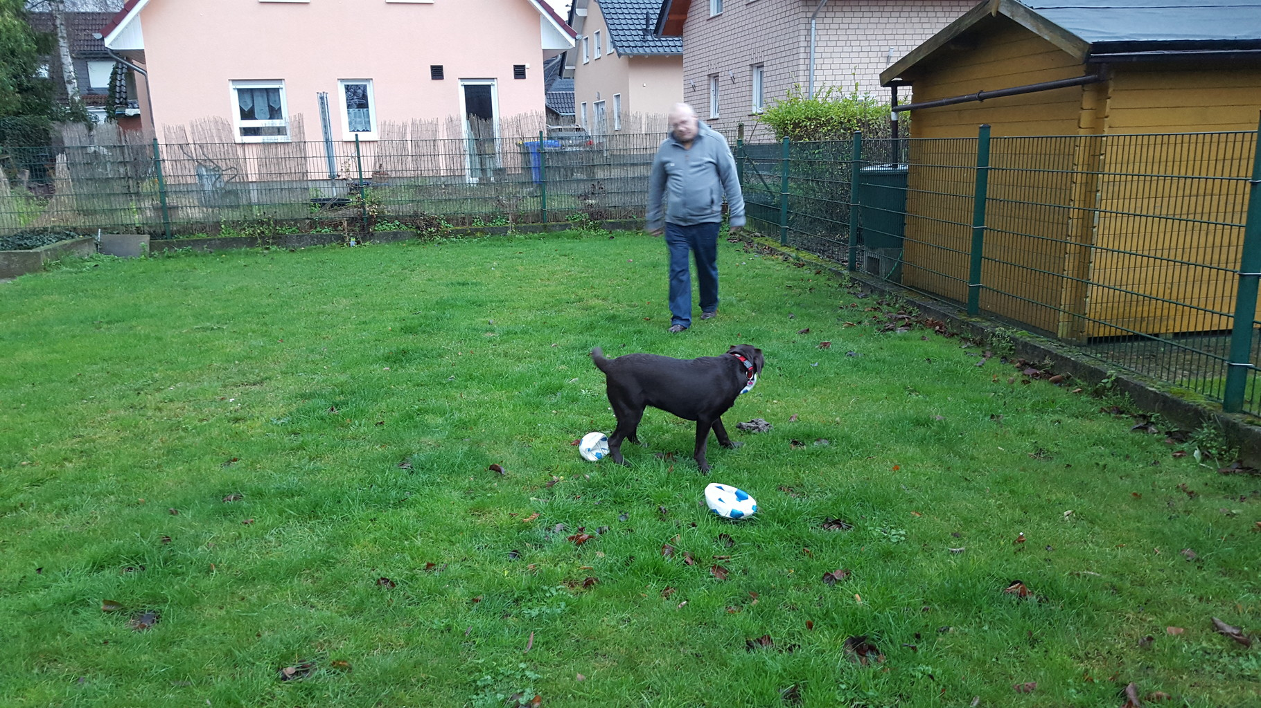Toll, früh morgens bei Freunden in Wesseling im Garten Fußball spielen....