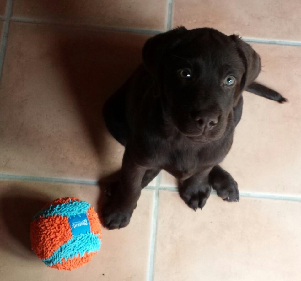 Ich und mein neuer Ball.