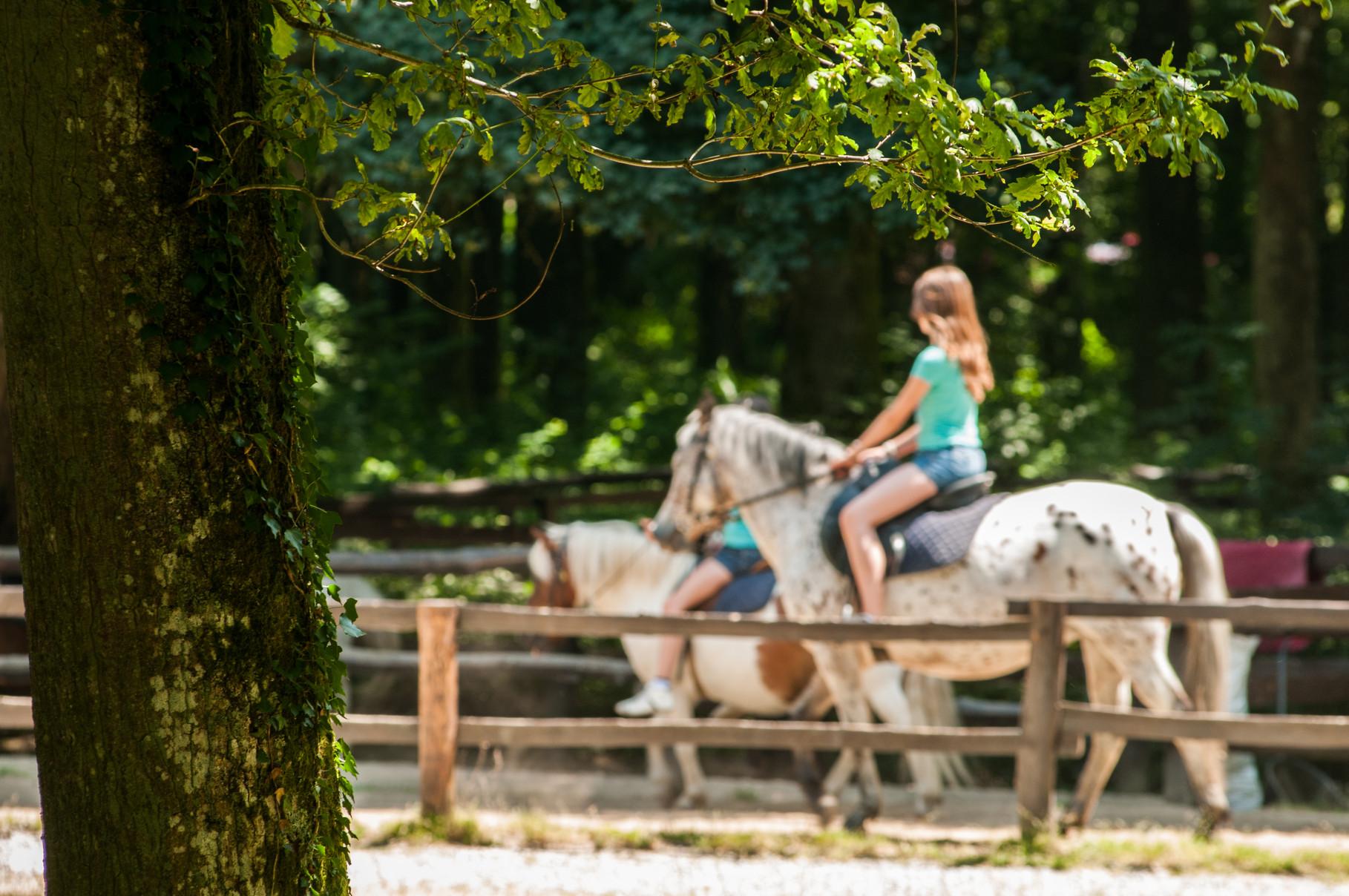 Manège à poneys à Sillé Plage © Stevan Lira