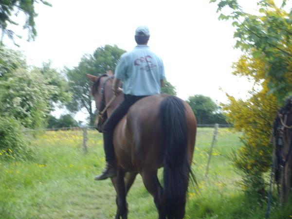 Equitation © Centre équestre de la Chataigneraie