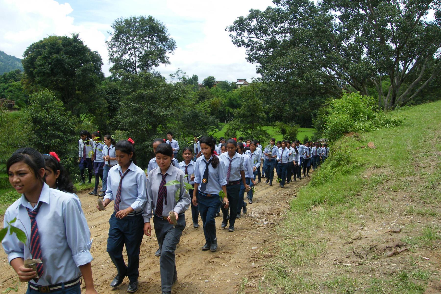 Schulkinder bei der Pflanzung von Rudraksha-Bäumen