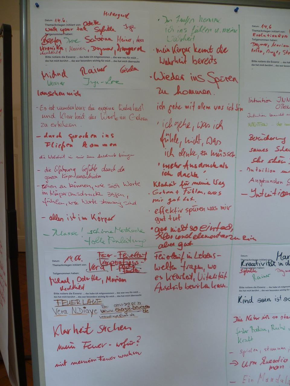 Auszug einer Wandelwand: Dokumentation des Erlebten, Erfahrenen, Gelernten aus einer Session