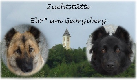 Copyright by Elo® am Georgiberg
