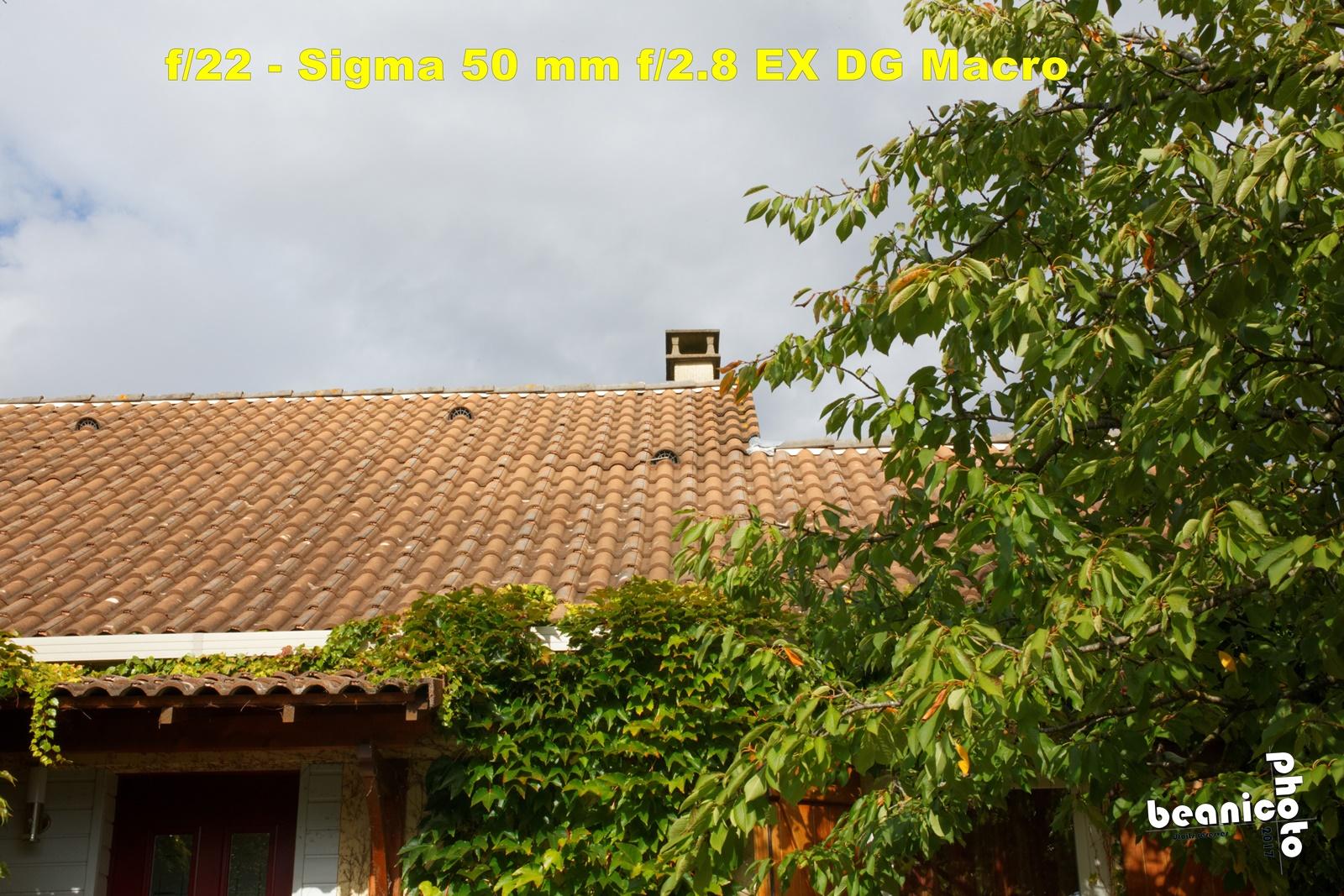 Canon 5DIII + Sigma 50 mm f/2.8 EX DG Macro - f/22 1/125 ISO400 - beanico-photo