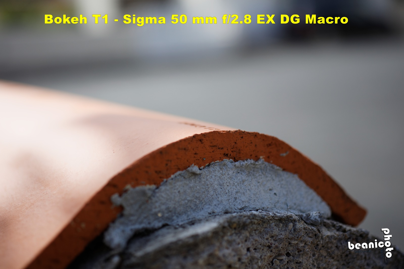 Canon 5DIII + Sigma 50 mm f/2.8 EX DG Macro - Bokeh f/2.8 - beanico-photo