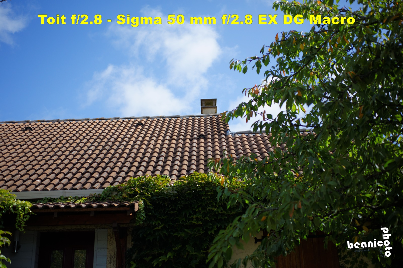 Canon 5DIII + Sigma 50 mm f/2.8 EX DG Macro - f/2.8 1/6000 ISO400 - beanico-photo
