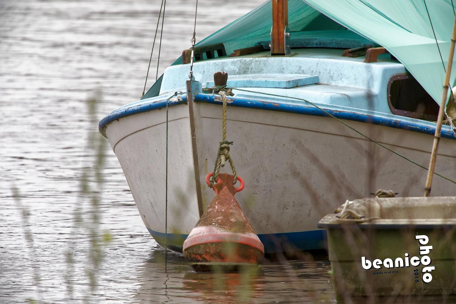 beanico-photo - bateau amarré sur la Maine (49) - Canon 5D IV + Tamron 150-600 G2 + Kenko 1,5x