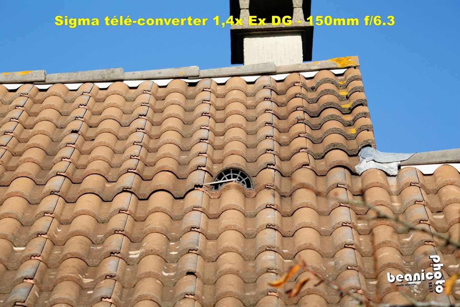 Test du Sigma Tele-Converter 1.4x Ex DG par Beanico
