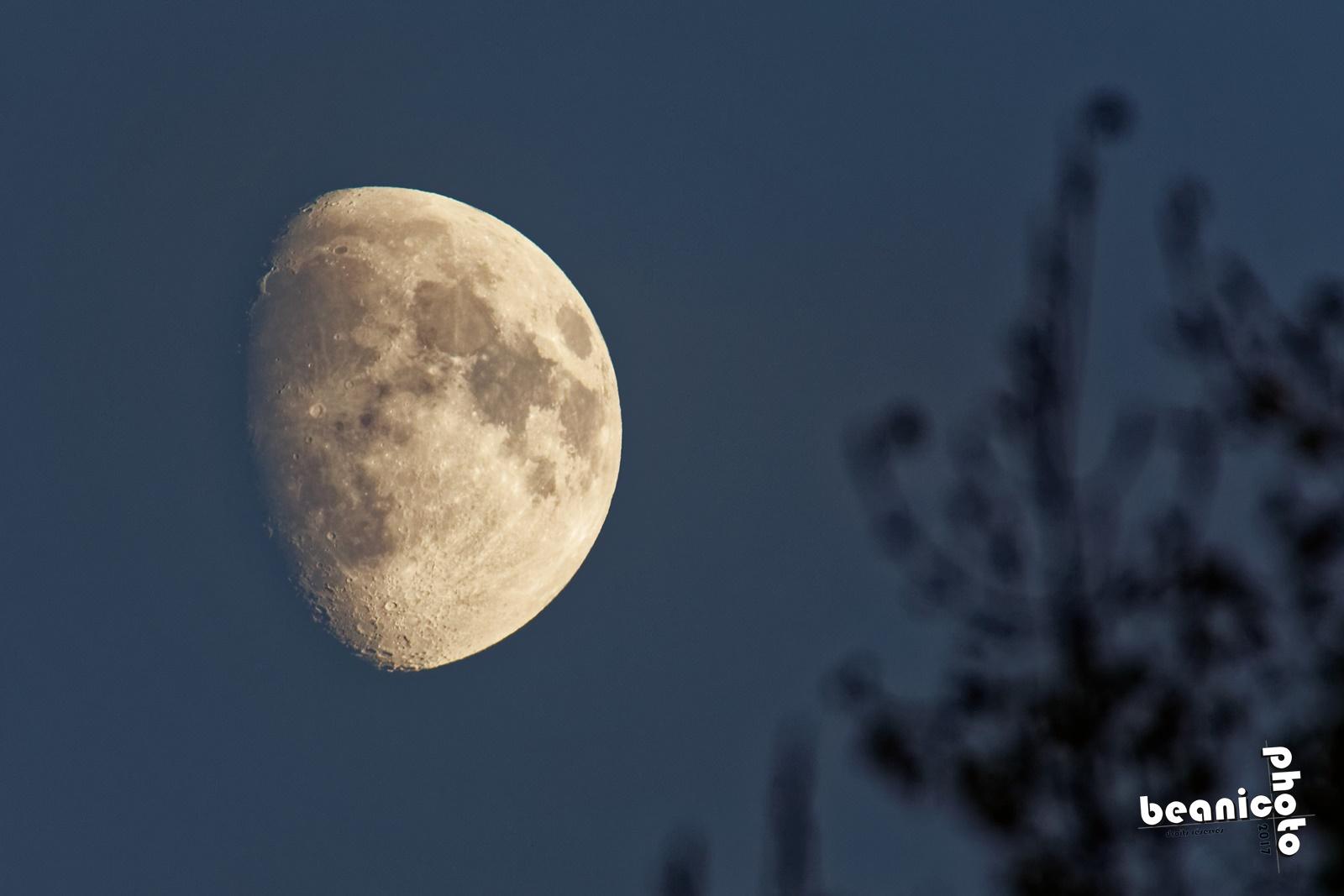 Canon 5DIII + Tamron 150-600 G2 + Kenko 1,5x - 900mm f/6.3 1/500 ISO1600 - La Lune - beanico-photo