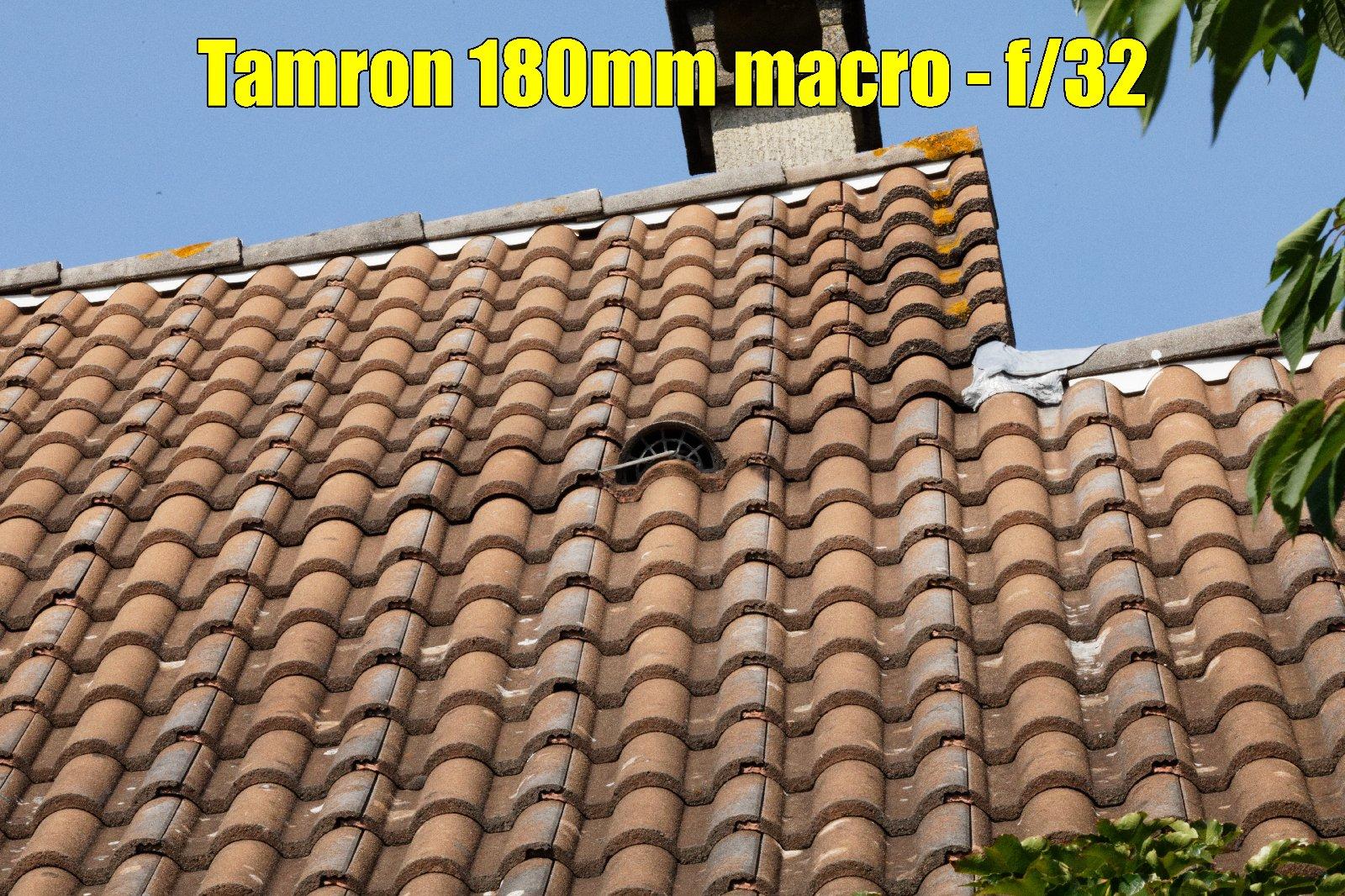 beanico-photo : test du Tamron 180 mm f/3.5 macro