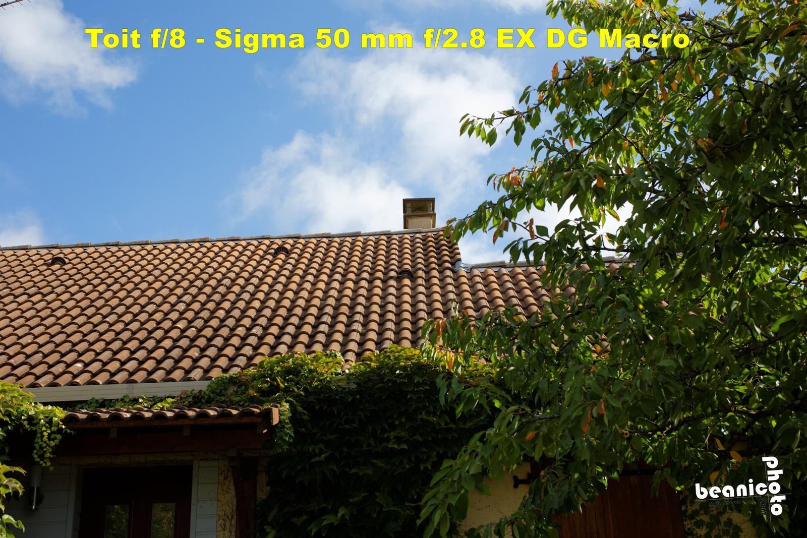 Canon 5DIII + Sigma 50 mm f/2.8 EX DG Macro - f/8 1/750 ISO400 - beanico-photo
