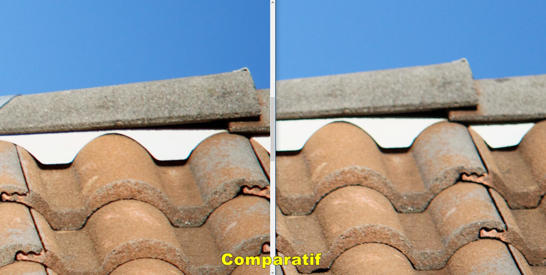 Match comparatif Sigma Tele-Converter 1.4x Ex DG contre Canon extender 1,4x II par Beanico