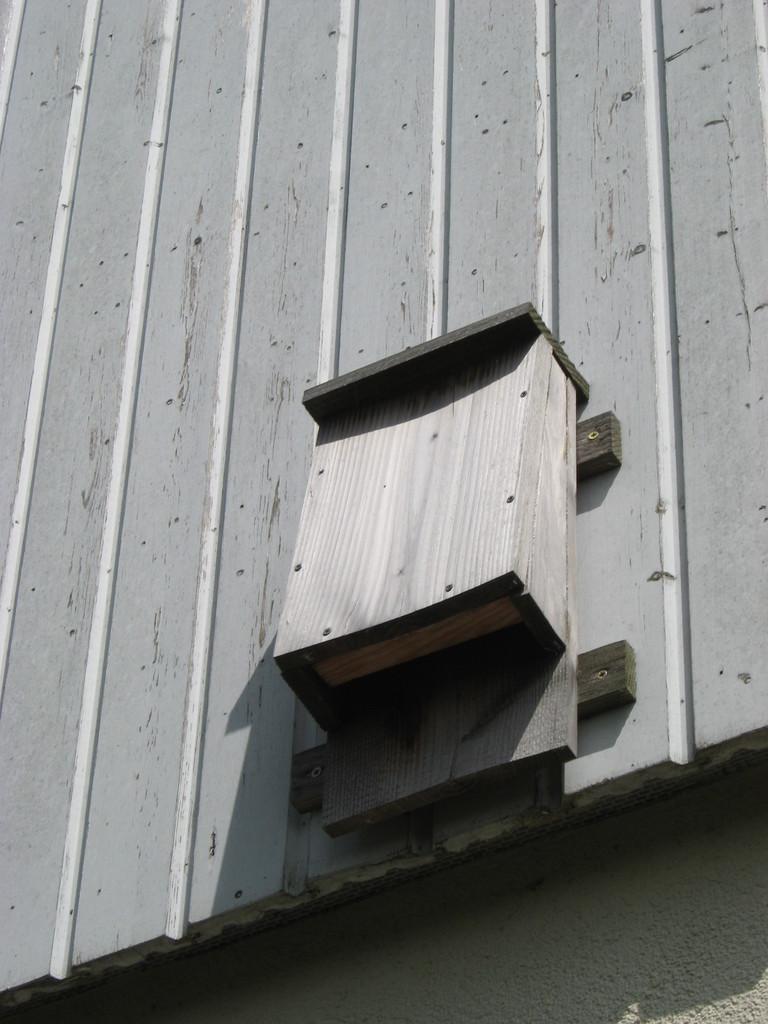 Ein Fledermauskasten, Ergebnis einer Fledermausaktion der ehemaligen Kl. 4
