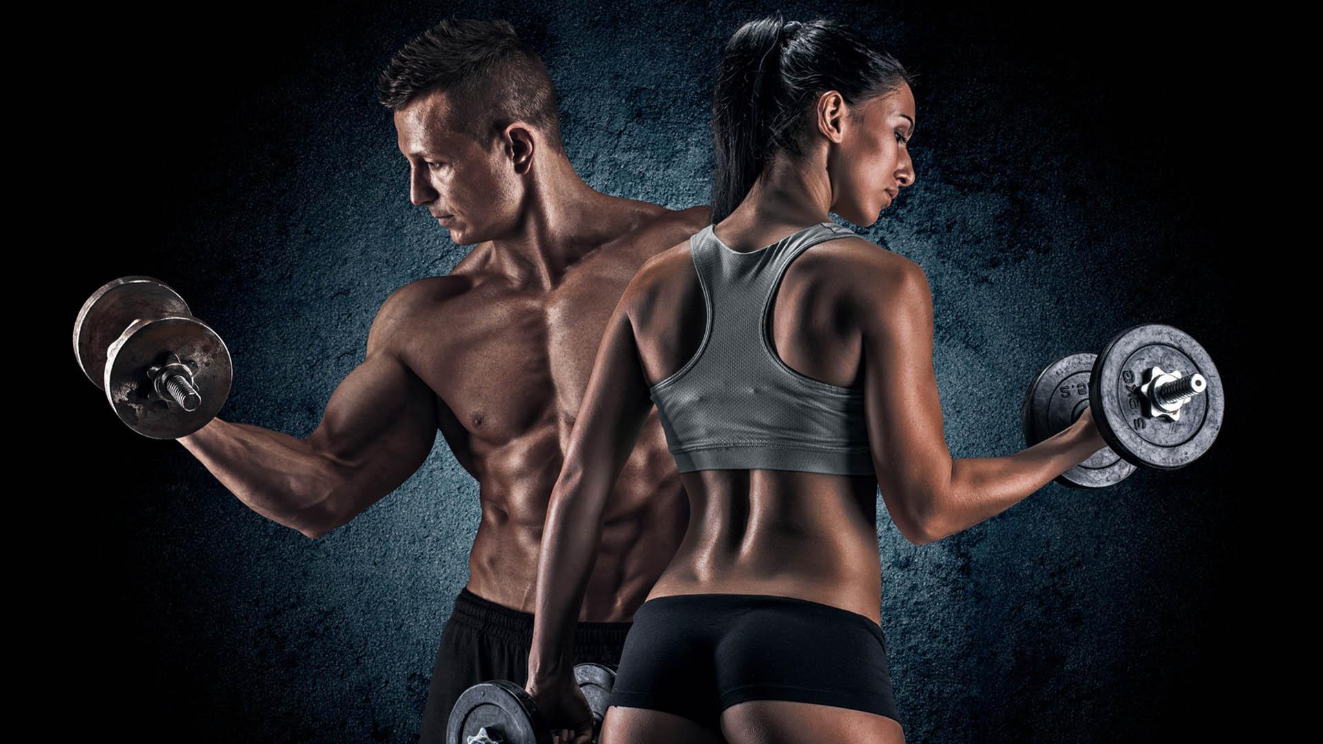 Fitnessstudio wallpaper  Online Shop - Muskelschmiede Ihr 24/7 Fitnessstudio
