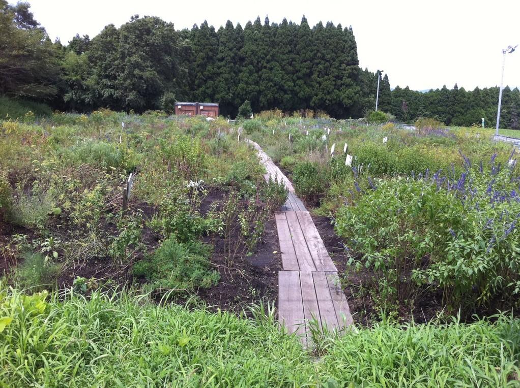 宮崎県小林市ふくどめハーブ園