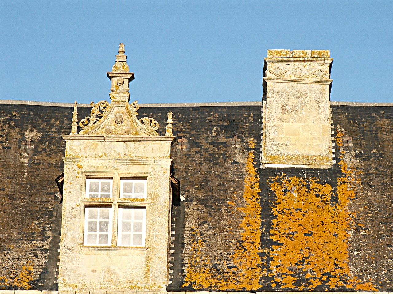 29/39 - Château de Saveilles © photo - propriétaire