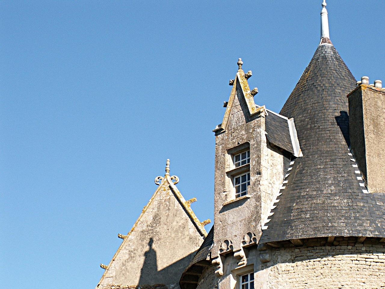 11/39 - Château de Saveilles © photo - propriétaire