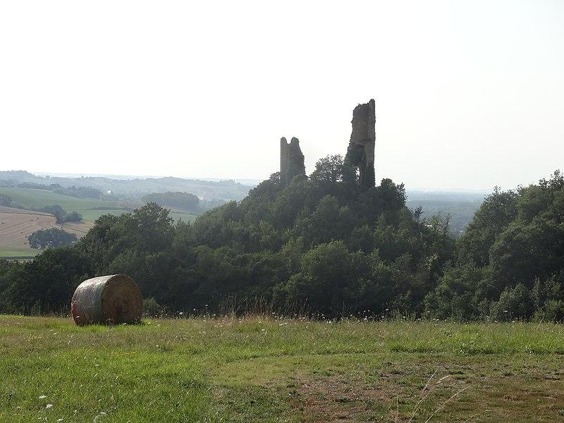 Le ruines du château