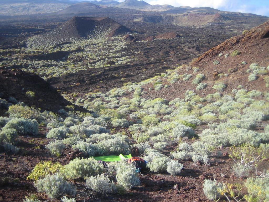 Visionssort & Kraftplatz einer Teilnehmerin in der Lava-Wüste