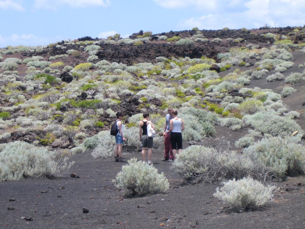Erd-Elementeweihe in der Lavawüste
