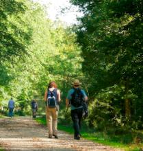 buitensport wandeling natuur mensen route broekpad Zutphen Leesten Vorden Hackfort