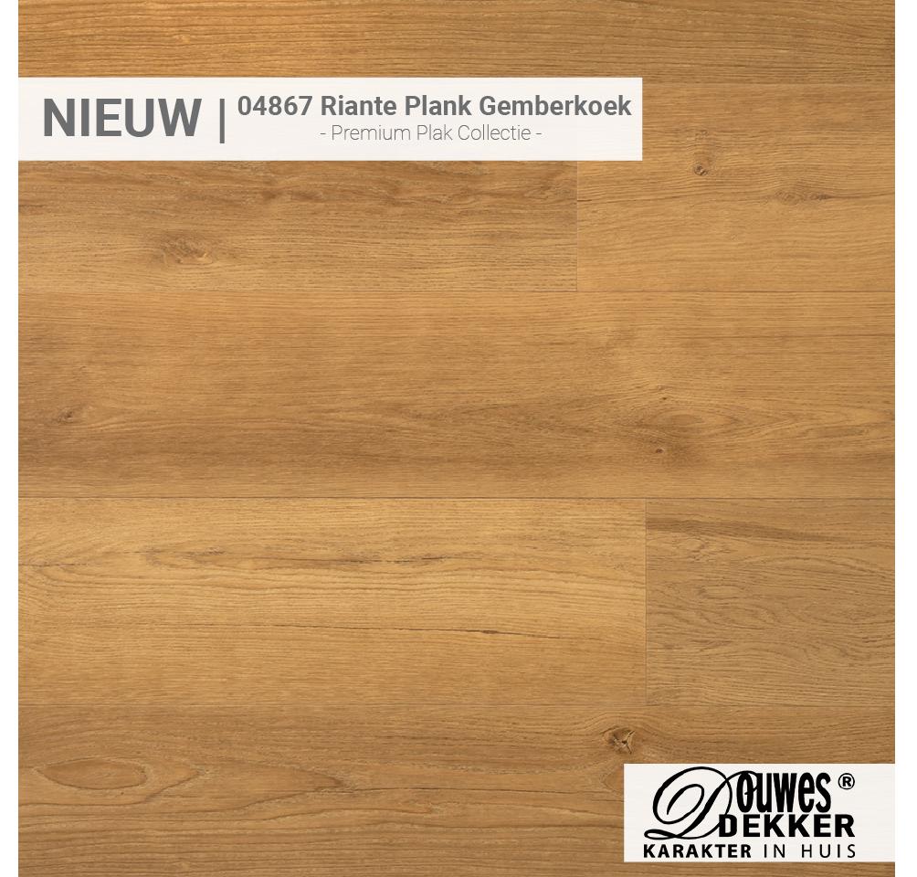 04867 Riante Plank Gemberkoek