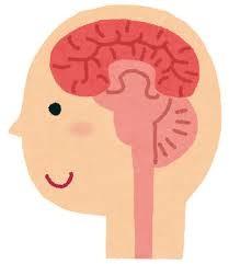 噛むことで脳が発達