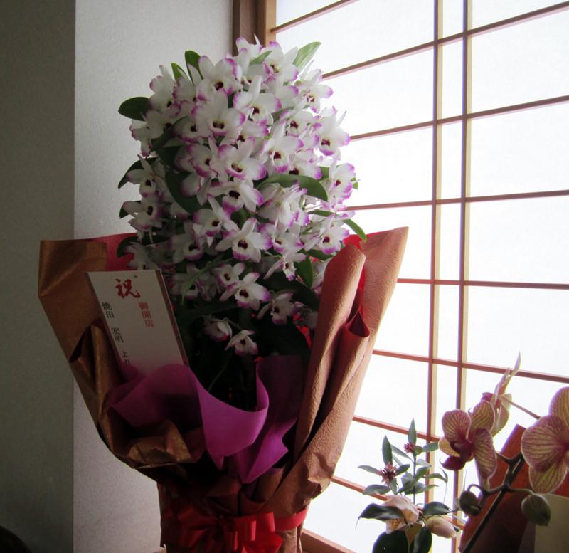 開店祝いのお花が飾られた店内