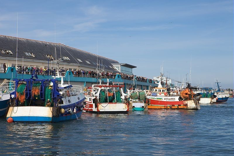 Arrivée des côtiers (vue de la terrasse) © Bourcier Simon