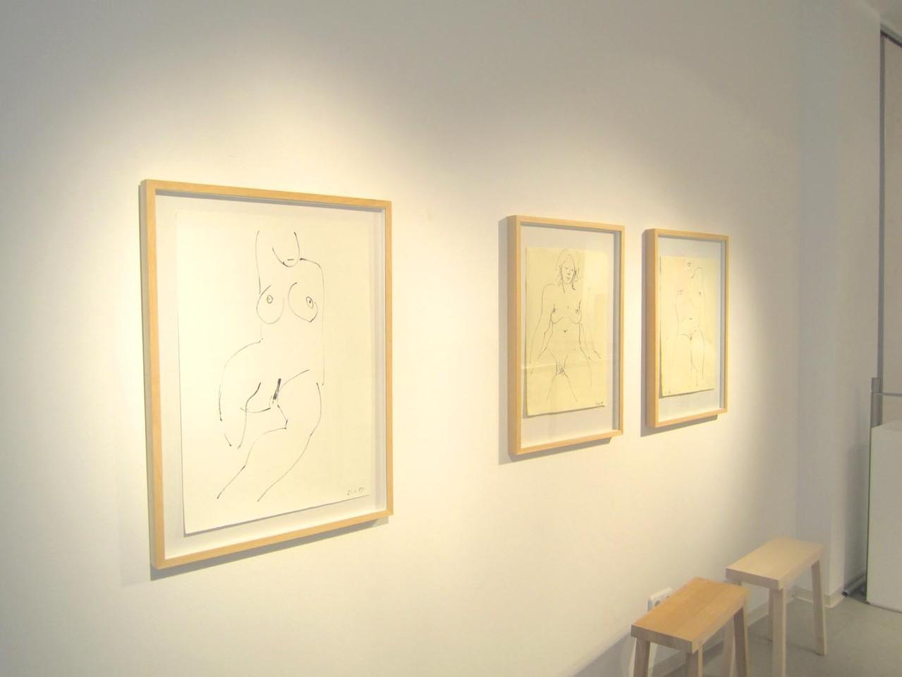 Akt-Zeichnungen, Tusche 2009