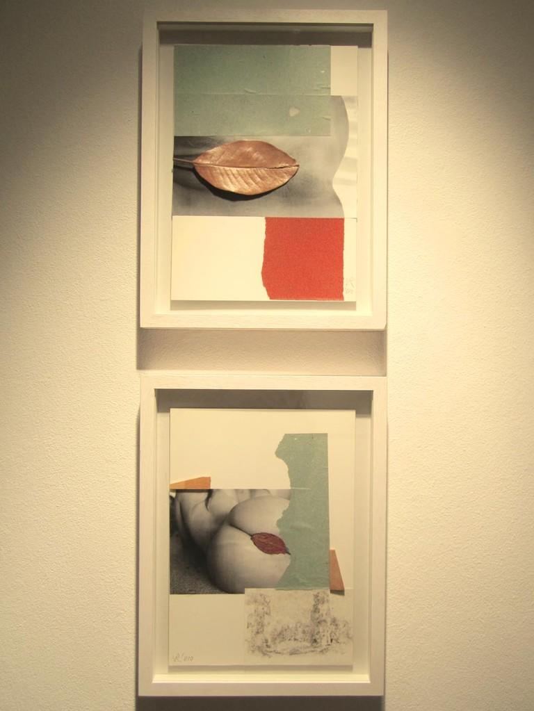 Collagen, 2010