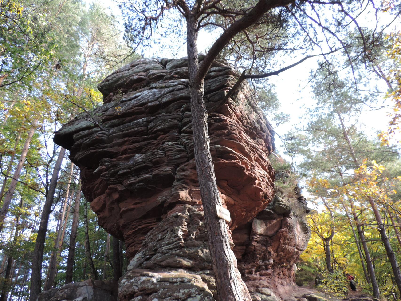 Felsen im Pfälzer Wald am Schusterpfad