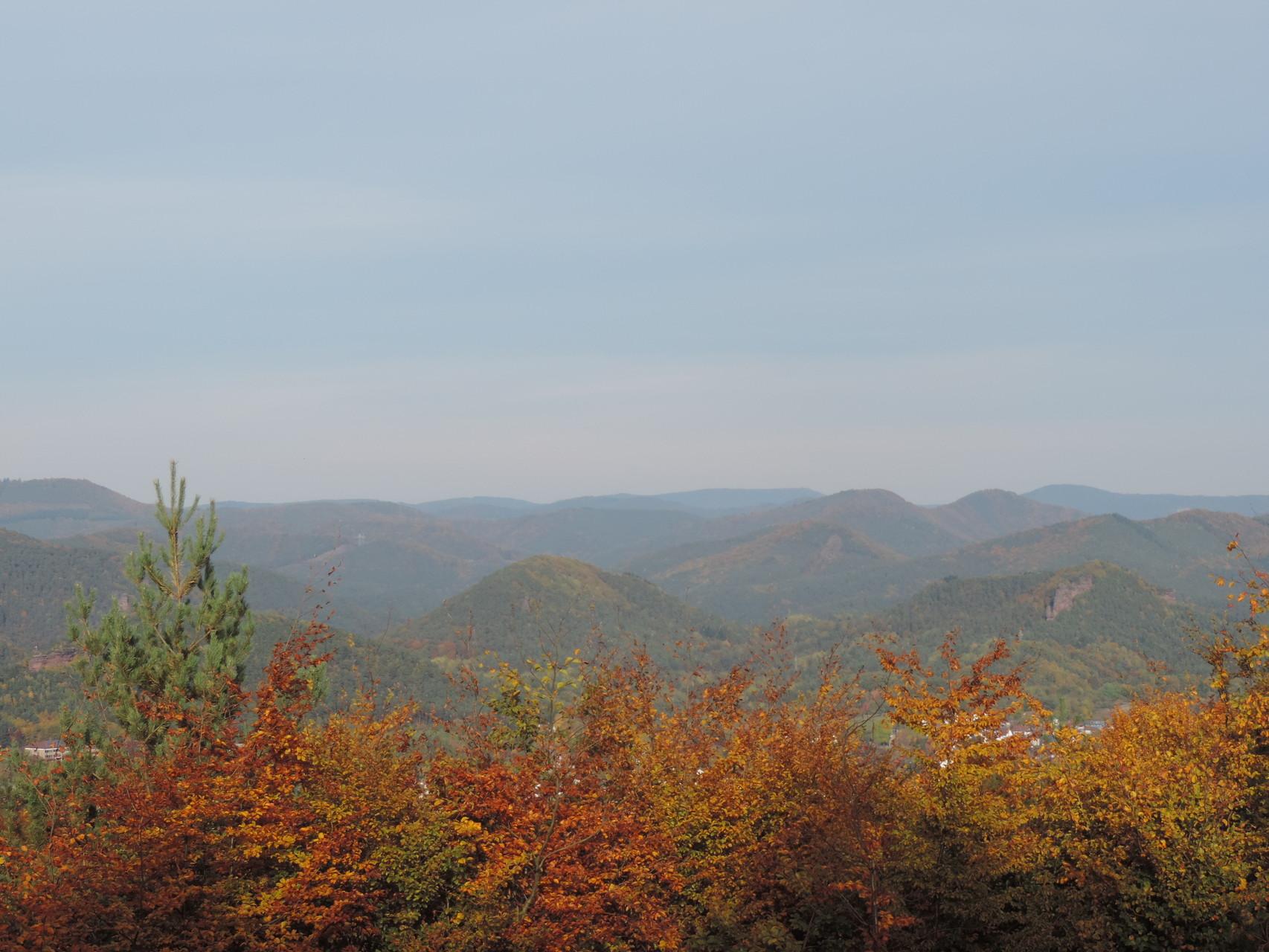 Der Pfälzer Wald im Herbst