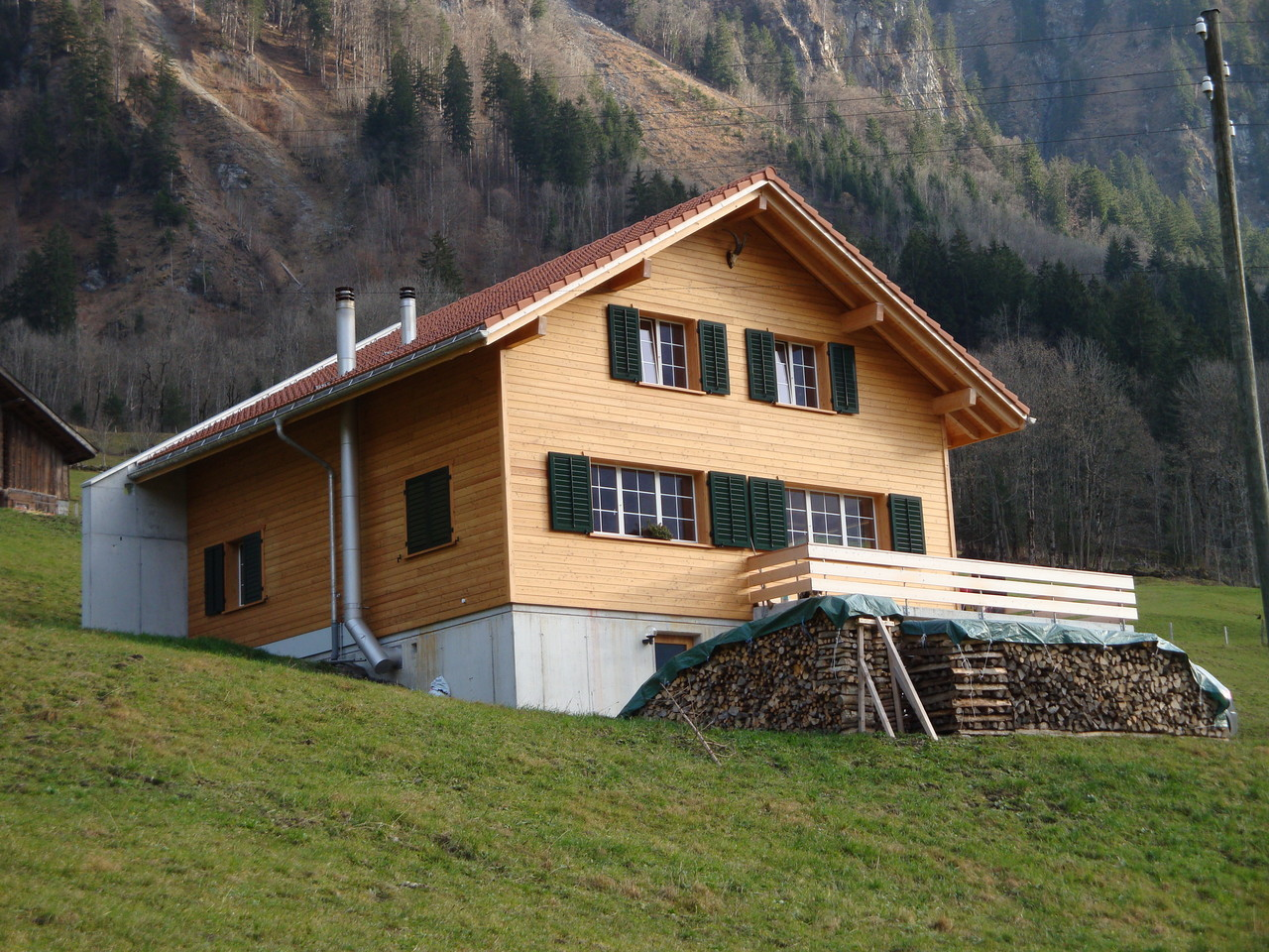 Neubau Einfamilienhaus, Linthal