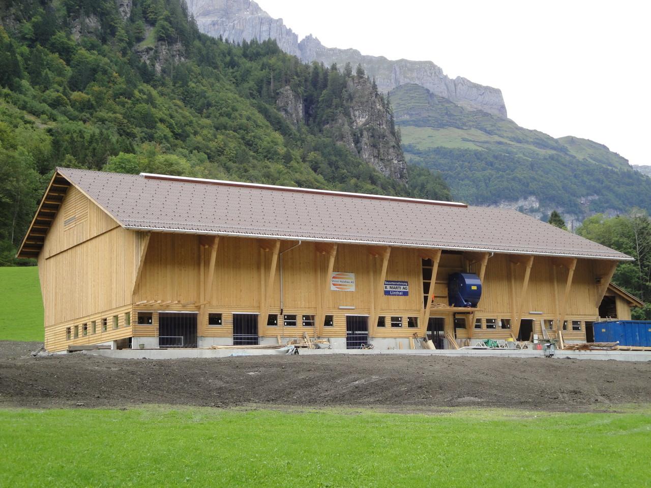 Stallneubau Linthal 2009