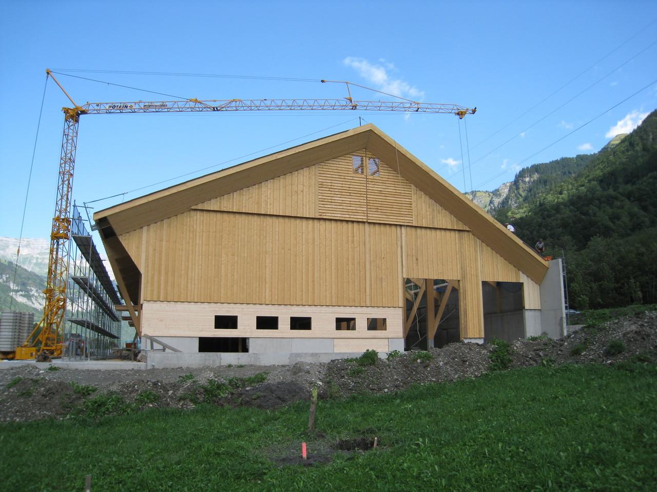 Stall 2008, Linthal