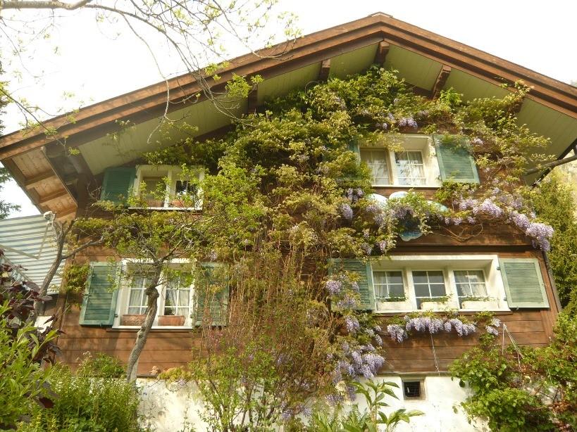 Fassade Einfamilienhaus vorher, Engi