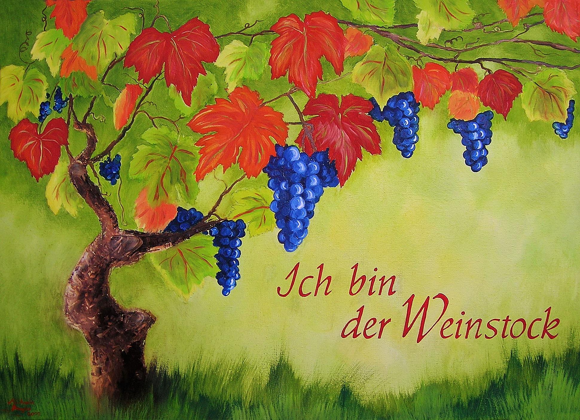 Ich bin der Weinstock