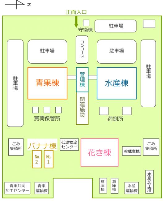 青果棟1階には青果の卸売場、仲卸売場があり、2階には青果の卸売業者、仲卸業者の事務所があります。水産棟も同じく1階は卸売場と仲卸売場で、2階は水産の卸売業者、仲卸業者の事務所となっています。青果棟の後ろには買荷保管所、水産棟の後ろには荷捌き所が設けられています。中央にある管理棟の奥には関連事業者の店舗があります。市場管理室は管理棟2階にあります。また、奥には花き棟、バナナ棟があります。