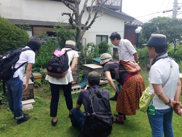 元玉川大学教授・松香先生のお庭を中心に展開する「花とミツバチプロジェクト」見学中