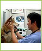 獣医師  西條 宏