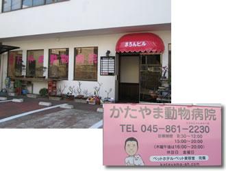 横浜市戸塚の獣医さん かたやま動物病院