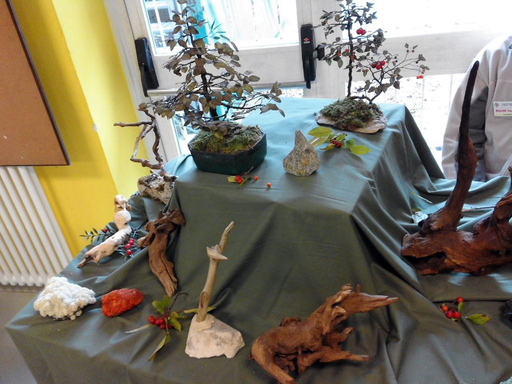 I bonsai in rame di Salvatore